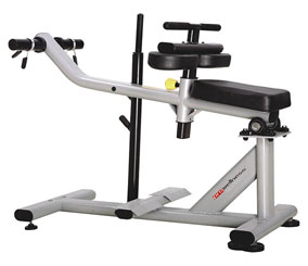 PROWELLNESS SILVER LINE 329 SEATED CALF