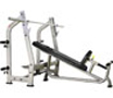 PROWELLNESS SILVER LINE 325 INCLINE BENCH (LUXURY)